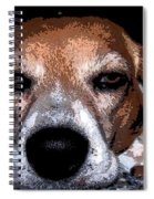 Lady 5 Spiral Notebook