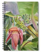 Lady Fingers - Banana Tree Spiral Notebook