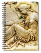 Lady In Robe And Roses Spiral Notebook