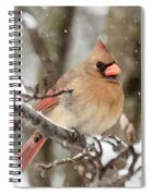 Lady In The Snow Spiral Notebook