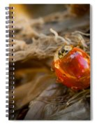 Lady Of Leisure Spiral Notebook