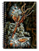 Lady Of The Dance Spiral Notebook
