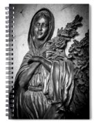 Lady On The Wall Spiral Notebook