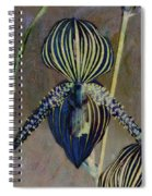 Lady Slipper Secret Garden Spiral Notebook