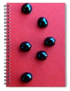 Ladybirds In Formation Spiral Notebook