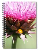 Ladybug And Thistle Spiral Notebook
