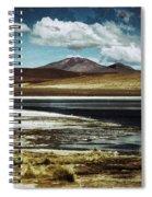Lagoon Grass Bolivia Vintage Spiral Notebook