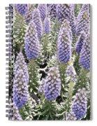 Laguna Beach Flora Spiral Notebook