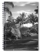 Lahaina Palm Shadows Spiral Notebook