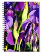 Lake Country Irises Spiral Notebook