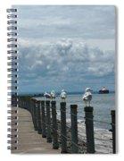 Lake Erie Gulls Spiral Notebook