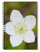 Lake Huron Wildflower Spiral Notebook