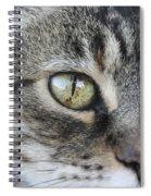 Lake Mascot Spiral Notebook