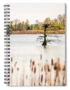 Lake Mattamuskeet Nature Trees And Lants In Spring Time  Spiral Notebook