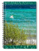 Lake Michigan Seagull In Flight Spiral Notebook