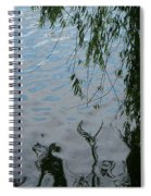 Lake Reflections Of Blue Spiral Notebook