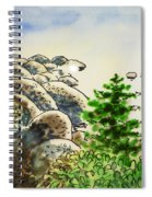Lake Tahoe - California Sketchbook Project Spiral Notebook