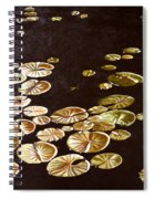 Lake Washington Lily Pad 10 Spiral Notebook