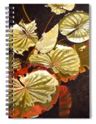 Lake Washington Lily Pad 11 Spiral Notebook