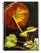 Lake Washington Lily Pad 18 Spiral Notebook
