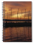 Lake Washington With Mount Rainier And Marina Spiral Notebook