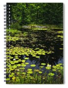 Lake With Lily Pads Spiral Notebook
