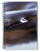 Lakeice38 Spiral Notebook