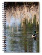 Lakeside - Mallard Spiral Notebook