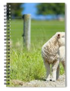 Lamb On The Farm Spiral Notebook