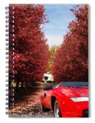Lamborghini Maple Lane Big House Spiral Notebook