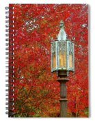 Lamp Post In Fall Spiral Notebook