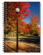 Lamp Post On The Corner Spiral Notebook