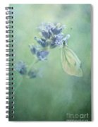 Land Of Milk And Honey Spiral Notebook