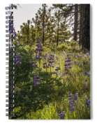 Land Of The Lupines Spiral Notebook