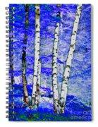 Land Of The Silver Birch Spiral Notebook