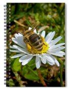 Daisy And Bee Spiral Notebook
