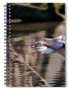 Landing Mallard Spiral Notebook