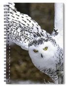 Landing Of The Snowy Owl Where Are You Harry Potter Spiral Notebook