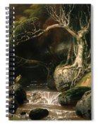 Landscape - Solitude Spiral Notebook