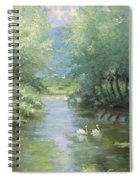 Landscape With Swans Spiral Notebook