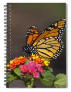 Lantana Landing Spiral Notebook