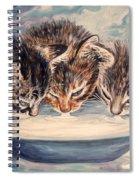 Lap Of Luxury Kittens Spiral Notebook