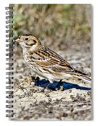 Lapland Longspur Spiral Notebook