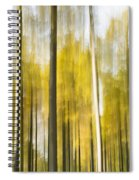 Larch Grove Blurred Spiral Notebook