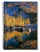 Larch Tree Reflection In Leprechaeun Lake  Spiral Notebook