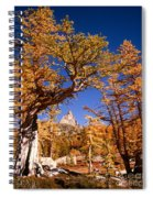 Larch Trees Frame Prusik Peak Spiral Notebook