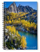 Larches At Perfection Lake Spiral Notebook