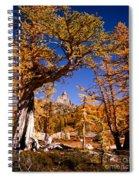 Larches Frame Prusik Peak Spiral Notebook