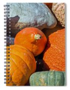 Large Edible Gourds Spiral Notebook