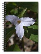 Large-flower Trillium Dspf277 Spiral Notebook